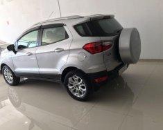 Cần bán xe Ford EcoSport năm sản xuất 2016, màu bạc giá 566 triệu tại Tp.HCM