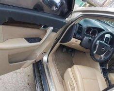 Bán ô tô Chevrolet Captiva năm sản xuất 2007, màu vàng giá cạnh tranh giá 279 triệu tại Tp.HCM