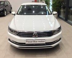 Bán Volkswagen Passat Bluemotion sản xuất 2017, màu trắng, nhập khẩu, giảm giá khủng những ngày cuối tháng giá 1 tỷ 450 tr tại Đà Nẵng