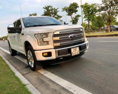 Bán Ford F 150 đời 2016, màu trắng, nhập khẩu nguyên chiếc, chính chủ xe chất giá 2 tỷ 850 tr tại Hà Nội