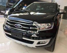 Cần bán xe Ford Everest đời 2018, màu đen, xe nhập giá 1 tỷ 299 tr tại Tp.HCM