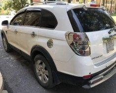 Bán Chevrolet Captiva đời 2010, màu trắng, 380tr giá 380 triệu tại Tp.HCM