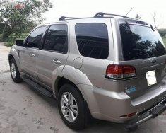 Cần bán 1 xe Escape XLT 2009, hai cầu chạy rất đầm chắc giá 400 triệu tại Tp.HCM