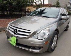 Cần bán gấp Mercedes R350 năm sản xuất 2007, xe nhập giá cạnh tranh giá 510 triệu tại Tp.HCM