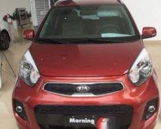 Bán xe Kia Morning sản xuất năm 2018, màu đỏ, giá tốt giá 299 triệu tại Hà Nội
