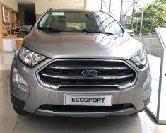 Ford EcoSport titanium đời 2018, màu bạc, giảm 40tr gói phụ kiện chính hãng giá 689 triệu tại Tp.HCM