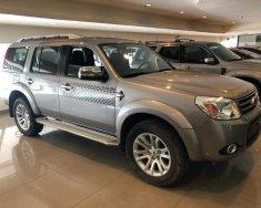 Cần bán Ford Everest 2.5L Limited sản xuất 2015, màu xám (ghi), 650tr giá 650 triệu tại Tp.HCM
