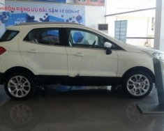 Bán Ford EcoSport Titanium 1.0 EcoBoost năm 2018, màu trắng giá 689 triệu tại Bình Định