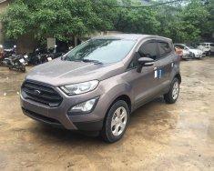 Bán Ford Ecosport 1.5P Ambient MT 2018, có 8 màu, giao xe toàn quốc, hỗ trợ 90% - LH 0914803810 giá 520 triệu tại Hà Nội