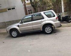 Cần bán lại xe Ford Escape đời 2009, màu bạc giá 390 triệu tại Tp.HCM