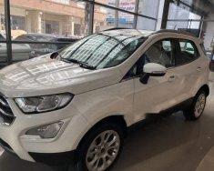 Bán xe Ford EcoSport sản xuất 2018, màu trắng giá tốt giá Giá thỏa thuận tại Tp.HCM