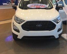 Bán Ford EcoSport Titanium 1.5L đời 2018, màu trắng giá cạnh tranh giá 520 triệu tại An Giang