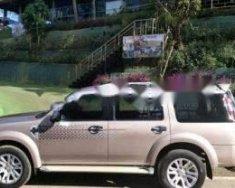 Cần bán xe Ford Everest 2014, màu bạc chính chủ, giá tốt giá 645 triệu tại Lâm Đồng