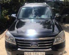 Cần bán lại xe Ford Everest năm sản xuất 2010, màu đen chính chủ  giá 520 triệu tại Lâm Đồng