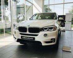 BMW X5 X-Drive 35i sx 2018, sẵn xe giao ngay, hỗ trợ vay 85% giá trị xe giá 3 tỷ 599 tr tại Tp.HCM