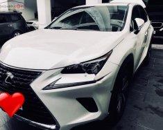Cần bán xe Lexus NX 300 đời 2017, màu trắng, nhập khẩu nguyên chiếc   giá 2 tỷ 550 tr tại Tp.HCM