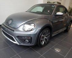 Bán xe Volkswagen Beetle Dune 2018 giá tốt, xe ngay giá 1 tỷ 469 tr tại Hà Nội