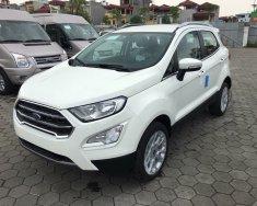 Cần bán Ford EcoSport đời 2018, giá tốt nhất trong năm, bao hồ sơ vay, lãi suất tốt nhất + tặng phụ kiện giá 545 triệu tại Sơn La