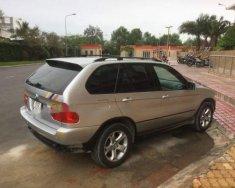 Cần bán lại xe BMW X5 sản xuất năm 2007, màu bạc, nhập khẩu, 350 triệu giá 350 triệu tại Tp.HCM