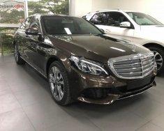Cần bán Mercedes C250 đời 2018, màu nâu giá 1 tỷ 729 tr tại Tp.HCM