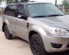 Bán ô tô Ford Escape 2.3 AT sản xuất 2009, màu xám   giá 379 triệu tại Hà Nội