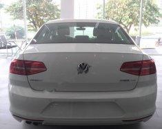 Bán Volkswagen Passat 1.8 Bluemotion 2017, màu trắng, nhập khẩu giá 1 tỷ 420 tr tại Hà Nội