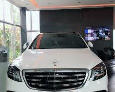 Siêu phẩm Mercedes-Benz S450 khuyến mãi mạnh trước tết giá 4 tỷ 157 tr tại Tp.HCM