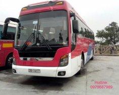 Bán lại xe Hyundai Universe Xpress Luxury 2011, màu đỏ, nhập khẩu giá 2 tỷ 250 tr tại Hà Nội