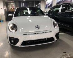 Bán Volkswagen Beetle model 2018 - Xe nhập khẩu chính hãng (Xe huyền thoại) giá 1 tỷ 469 tr tại Tp.HCM