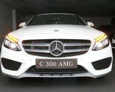 Mercedes C300 AMG giao toàn quốc, đủ màu giao ngay KM cực hấp dẫn - LH: 0944 33 81 83 giá 1 tỷ 949 tr tại Tp.HCM