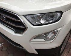 Bán Ford EcoSport ecosport 1.0l ecoboost đời 2018, màu trắng, giá 660tr hỗ trợ ngân hàng, giao xe toàn quốc giá 660 triệu tại Hà Nội