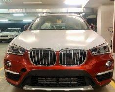 Bán xe BMW X1 năm sản xuất 2018, màu cam, nhập khẩu 100%, giá tốt giá 1 tỷ 829 tr tại Bình Dương