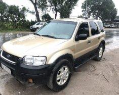 Cần bán lại xe Ford Escape AT năm sản xuất 2001, màu vàng, gầm chắc giá 96 triệu tại Hà Nội
