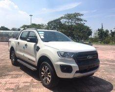 Bán Ford Ranger Wildtrak 2.0L một cầu, nhập khẩu nguyên chiếc. LH giá tốt nhất 0978 018 806 giá 853 triệu tại Hà Nội