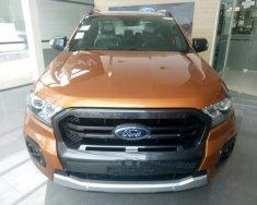 Cần bán xe Ford Ranger Wildtrark 2.0 Bi-Turbo 4*4, sản xuất 2018, màu cam, xe nhập, giao xe ngay giá 918 triệu tại Bình Định