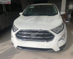 Bán Ford EcoSport Titanium 1.0 EcoBoost năm sản xuất 2018, màu trắng giá 665 triệu tại Tp.HCM