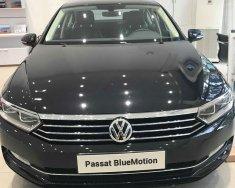 Volkswagen Passat Bluemotion nhập 100% Đức, hỗ trợ ngân hàng 80% thủ tục nhanh gọn lẹ giá 1 tỷ 420 tr tại Tp.HCM