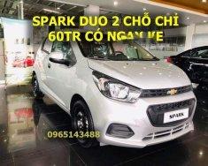 Bán xe Chevrolet Spark Duo năm sản xuất 2018, màu bạc, xe nhập, giá tốt giá 259 triệu tại Đồng Nai