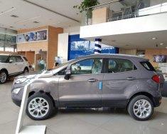 Bán Ford EcoSport sản xuất năm 2018, màu xám giá 610 triệu tại Tp.HCM