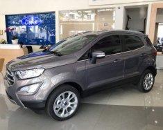 Cần bán Ford EcoSport đời 2018, màu xám giá 510 triệu tại Tp.HCM