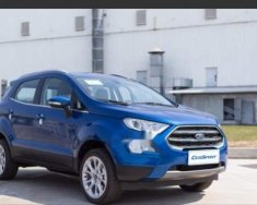 Bán xe Ford EcoSport sản xuất năm 2018, màu xanh lam giá 509 triệu tại Tp.HCM
