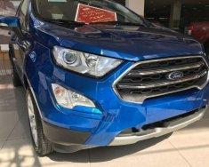 Bán xe Ford EcoSport đời 2019, 620tr giá 620 triệu tại Tp.HCM