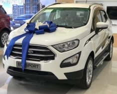 Bán Ford EcoSport năm 2018, màu trắng, giá chỉ 613 triệu giá 613 triệu tại Tp.HCM