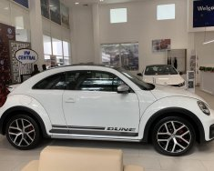 [VW Trần Hưng Đạo] giao ngay Beetle 2.0 đủ màu, nhập khẩu nguyên chiếc, hỗ trợ vay 80% với lãi suất thấp giá 1 tỷ 499 tr tại Tp.HCM