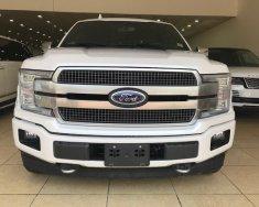 Bán xe Ford F 150 Platium đời 2019, màu trắng, nhập khẩu giá 4 tỷ 290 tr tại Hà Nội