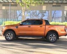 Cần bán gấp Ford Ranger Wildtrak năm 2016, nhập khẩu Thái Lan giá 765 triệu tại Tp.HCM