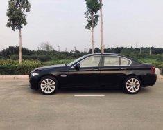Bán ô tô BMW 5 Series năm 2011, màu đen, nhập khẩu nguyên chiếc giá 1 tỷ tại Tp.HCM