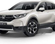 Cần bán xe Honda CR V đời 2019, màu trắng, nhập khẩu giá 1 tỷ 118 tr tại Tp.HCM