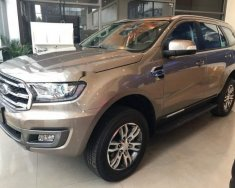 Bán ô tô Ford Everest năm sản xuất 2018, màu nâu giá 1 tỷ 122 tr tại Hà Nội
