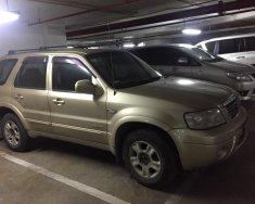 Cần bán gấp Ford Escape AT 2.3L 2004, màu vàng, nhập khẩu nguyên chiếc   giá 350 triệu tại Hà Nội